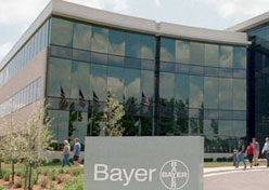 Bayer cria fanpage no Facebook para dono de pet