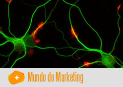 Neurociência aplicada ao Neuromarketing